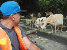 Feeding the wildlife?