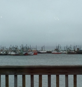 View from the restaurant Digby Harbor
